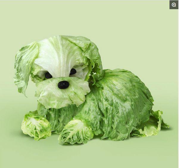 """用蔬菜水果制作可爱的""""小动物"""""""