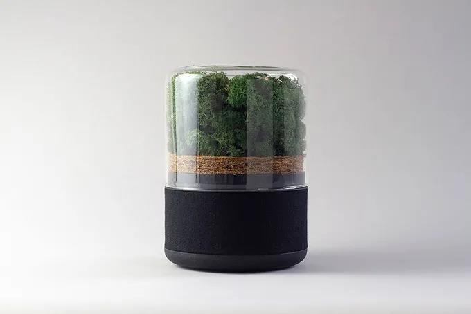 Briiv来自大自然的环保空气净化器