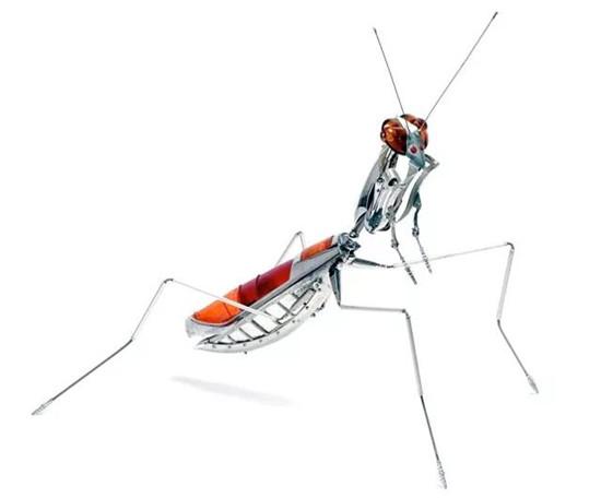 废旧金属打造机械昆虫 太逼真了!